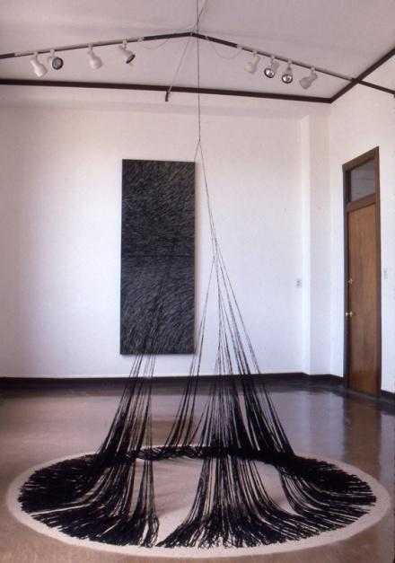 13 Genenrations of Bifurcation, Harwood Art Center, Albuquerque 2002